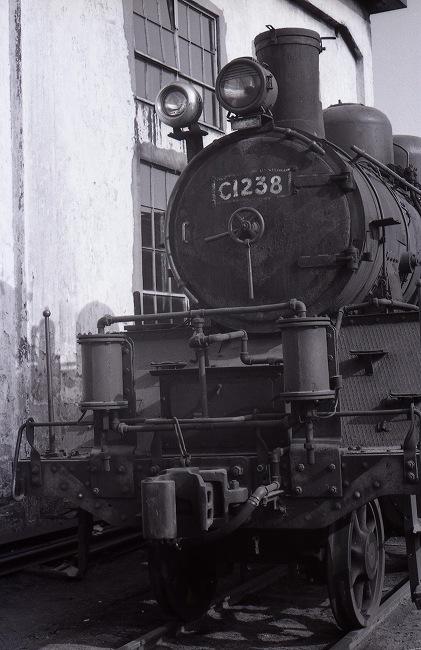 C1238 1.jpg
