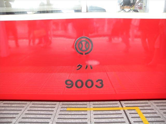 DSCN7963_R.JPG