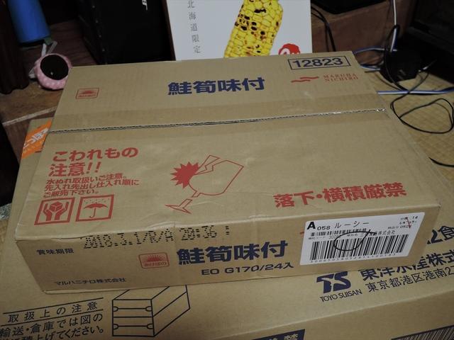 DSCN9687_R.JPG
