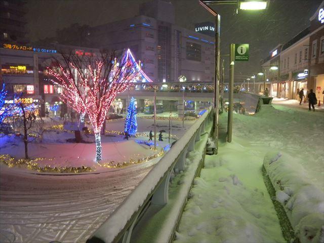大雪8_R.JPG