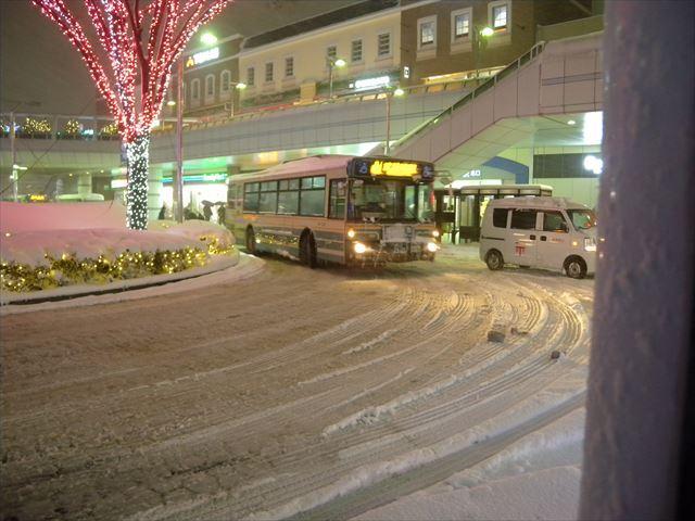 大雪9_R.JPG