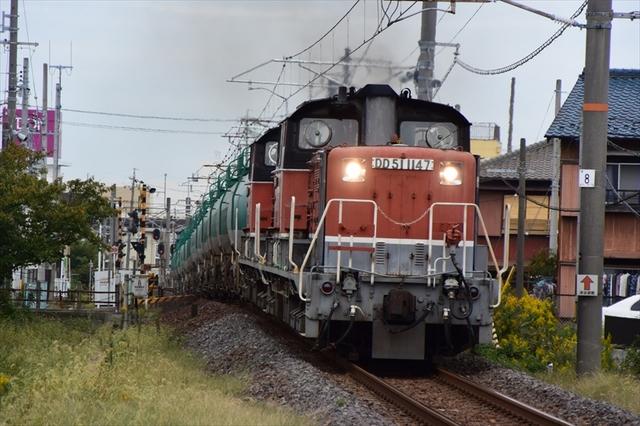 DD517.JPG